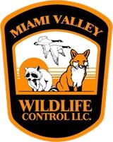 Miami Valley Wildlife Control
