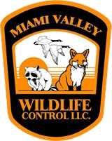 Miami Valley Wildlife Control